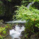 水神の滝つぼから流れ出る水