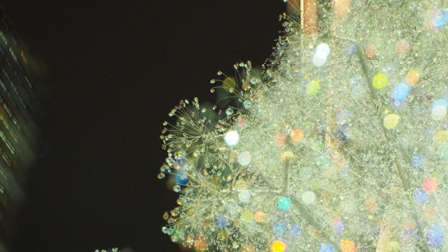 紀尾井町タワーのクリスタルツリー