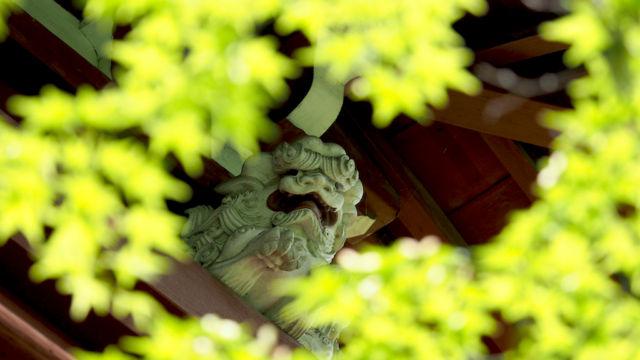 仁王門の白獅子