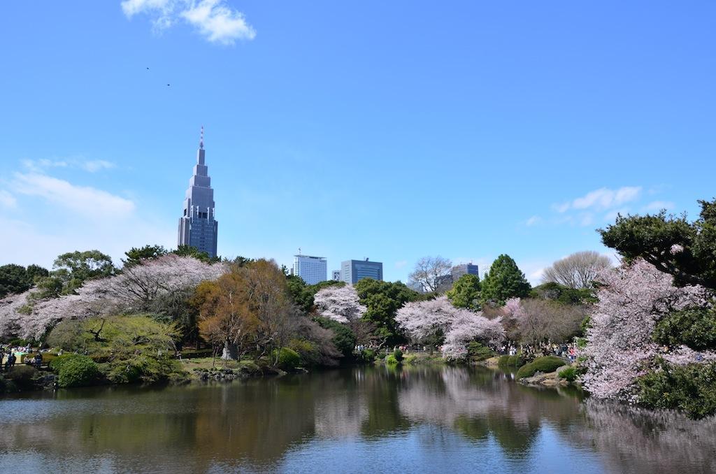 新宿御苑-日本庭園