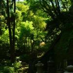 東慶寺墓苑