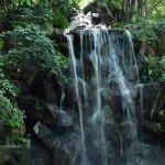 名主の滝公園の、男滝