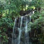 名主の滝公園の、男滝 全景