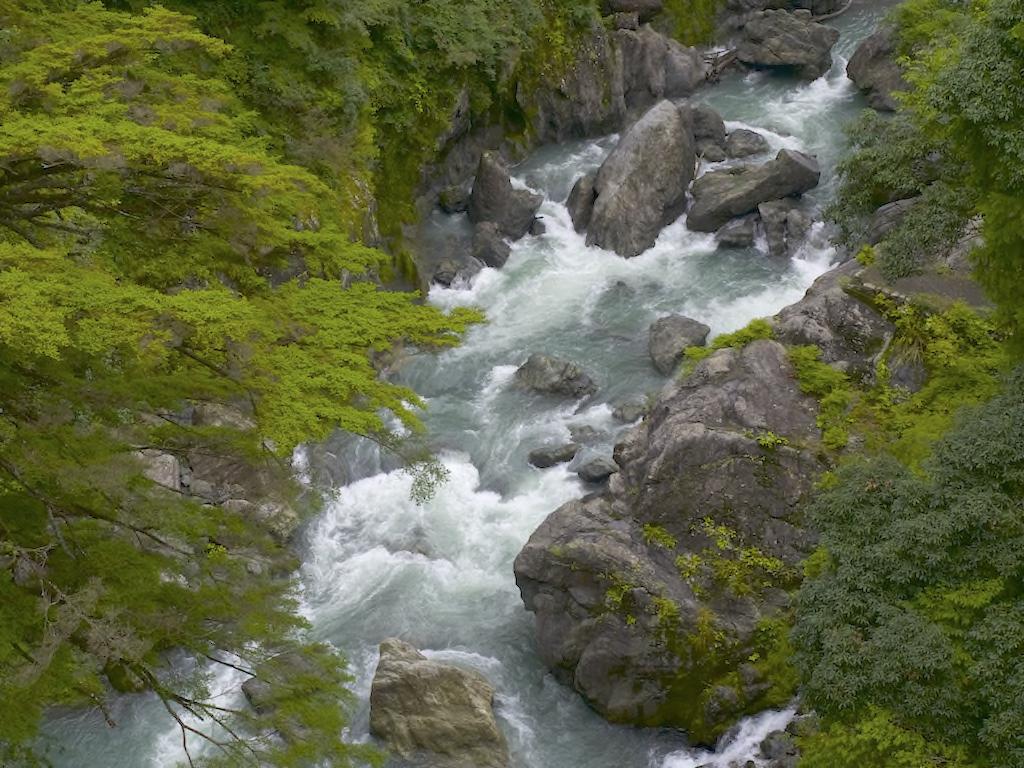 雲仙橋からみる渓谷
